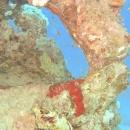dahab-islands-107