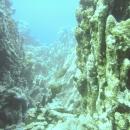 dahab-islands-39